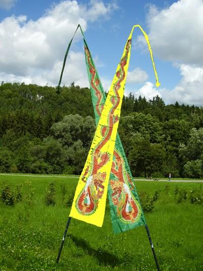 Drachenflagge lila 5 Meter, Schlangenfahne Schlangendrachen, DF511
